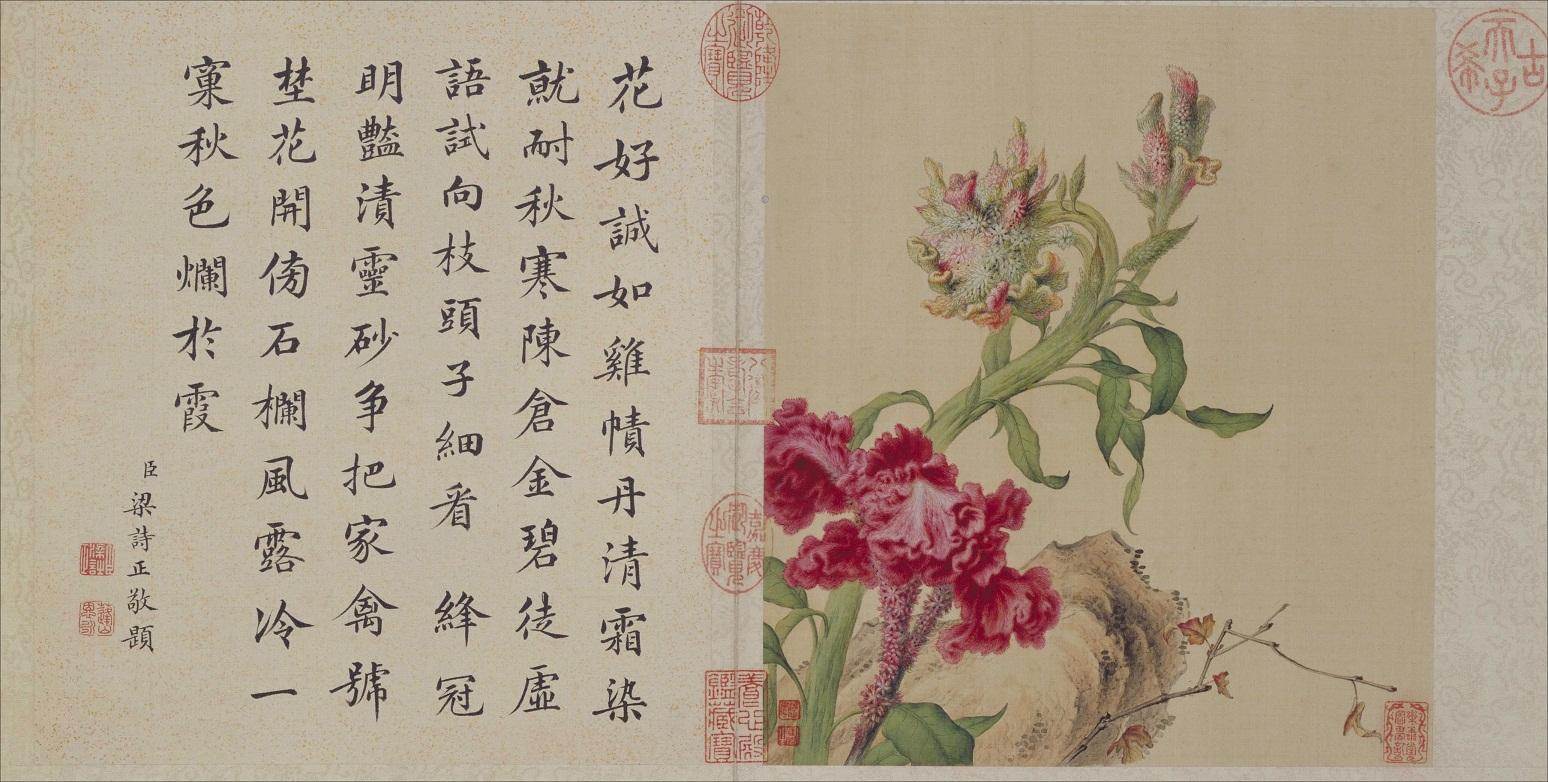 郎世宁《花鸟图册》北京故宫博物院藏8
