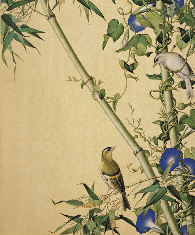 郎世宁《仙萼长春图册-翠竹牵牛》