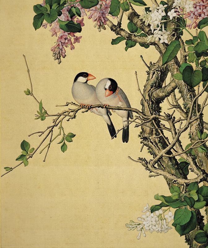 郎世宁《仙萼长春图册-紫白丁香》