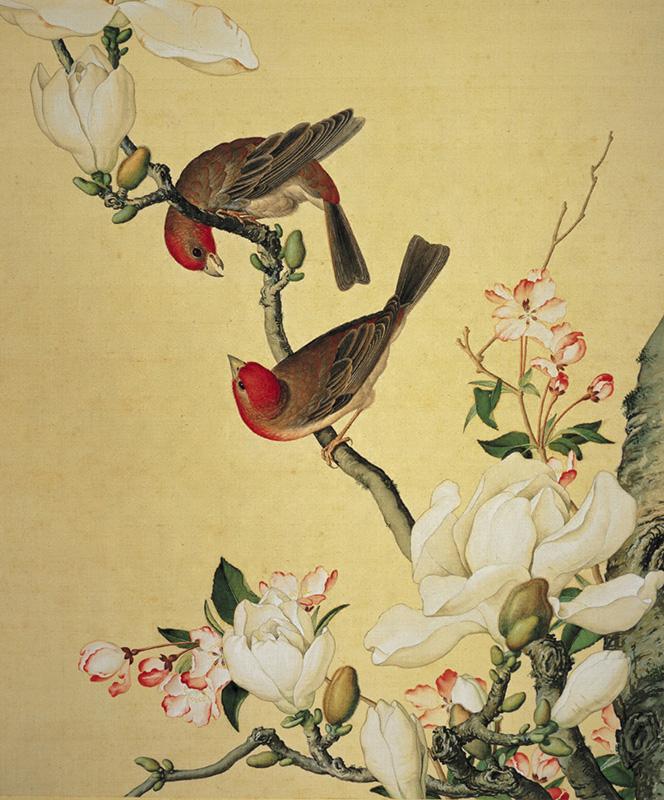 郎世宁《仙萼长春图册-海棠与玉兰》