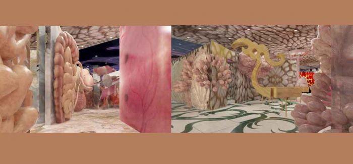戴帆的空间 : 鮟鱇 身体 灵魂 感觉 意识的熔炼场