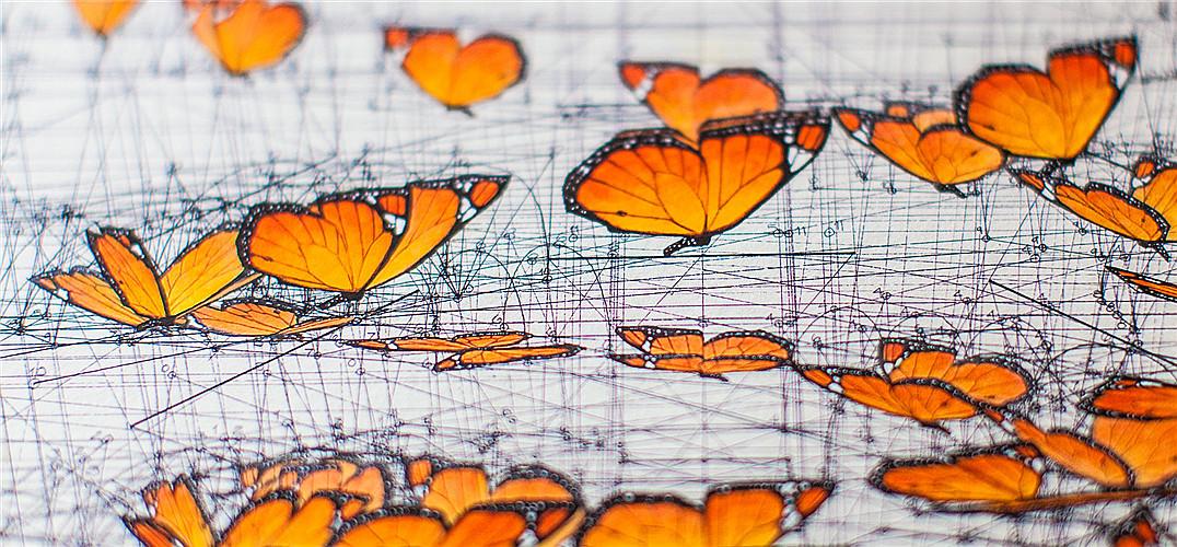 斐波那契数列:震撼心灵的几何美学