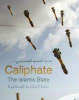 摄影师发现ISIS组织挪用其图片:对战争的恐惧变为宣传工具