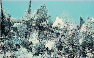 中国写意油画学派名家研究展作品选