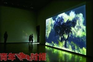 """""""迷因城市""""首届跨媒体艺术节开幕"""