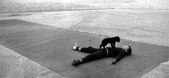 Robert Doisneau:把巴黎拍成喜剧 把毕加索拍成面包手