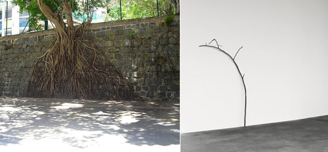 "【Art or Not】邀请你来猜:两组""树枝""哪个才是真正艺术"