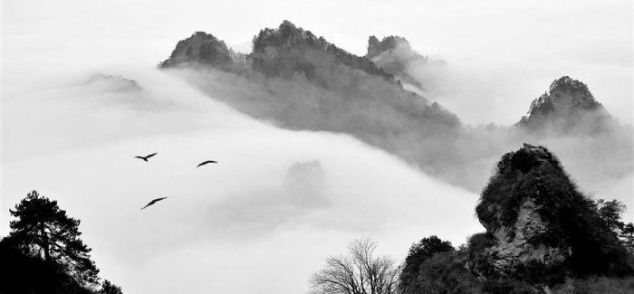 浅谈中国传统水墨画中的乌鸦