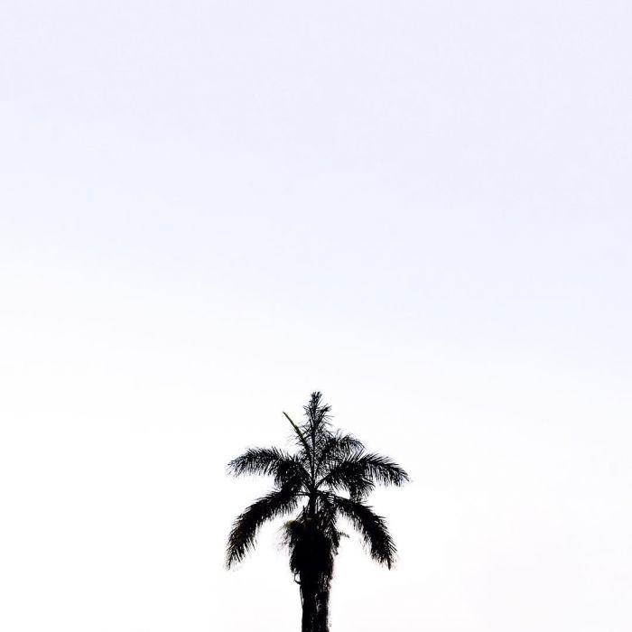 跟法國攝影師學習如何構圖:把照片拍得像白日夢一樣的極簡主義攝影 2