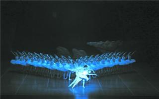 """上海芭蕾舞团豪华版《天鹅湖》荷兰巡演收官 48只天鹅列阵""""白色翼海"""""""