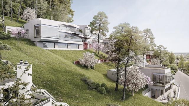 瑞士阿劳hungerberg山坡混凝土集合住宅_设计_生活