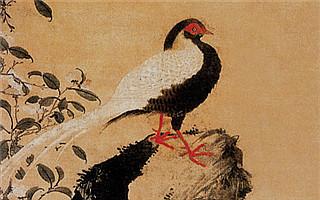 中国茶花画的发展