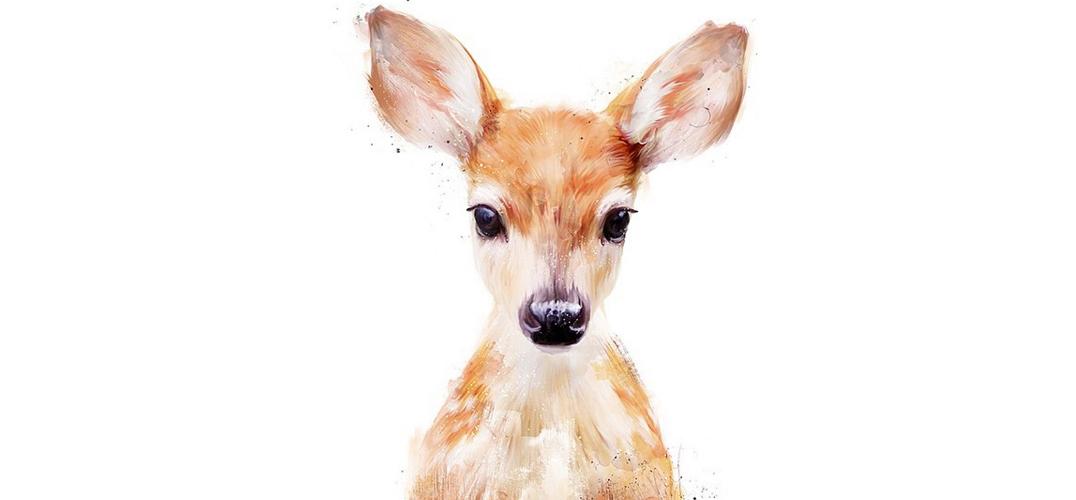 hamilton的动物绘画作品