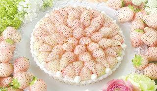 品尝初恋酸甜滋味:浪漫奢华的白草莓蛋糕