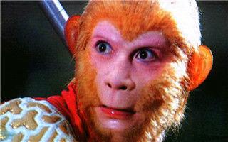 """""""猴王""""不上猴年春晚不只是少了个节目"""