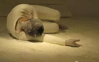 异质共生·2016国际当代艺术展举办