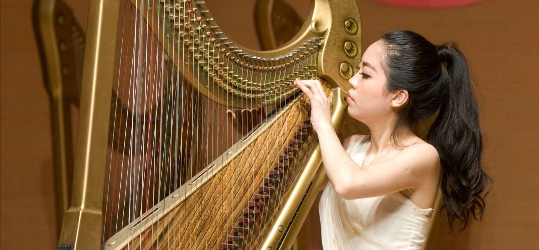 竖琴之宗箜篌华丽亮相图片