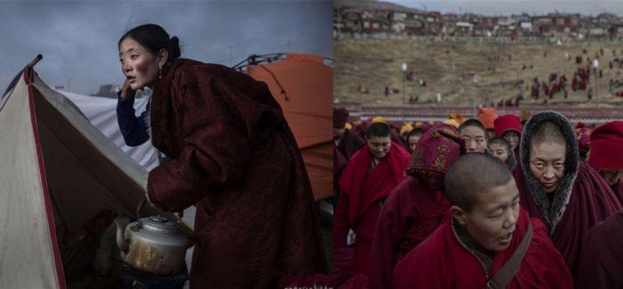 镜头下的欧洲难民与天津爆炸征服了荷赛奖