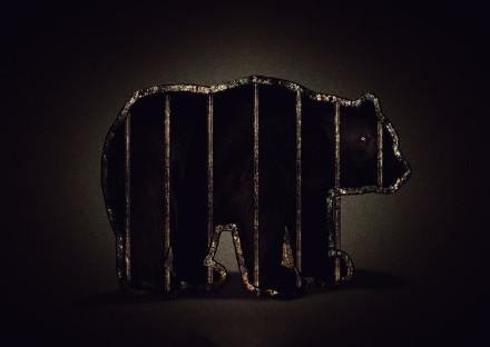 保护动物宣传公益海报