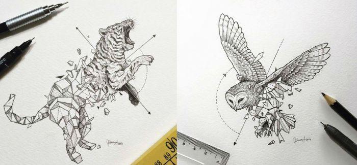 蜕变即视感 kerby手绘动物插画作品