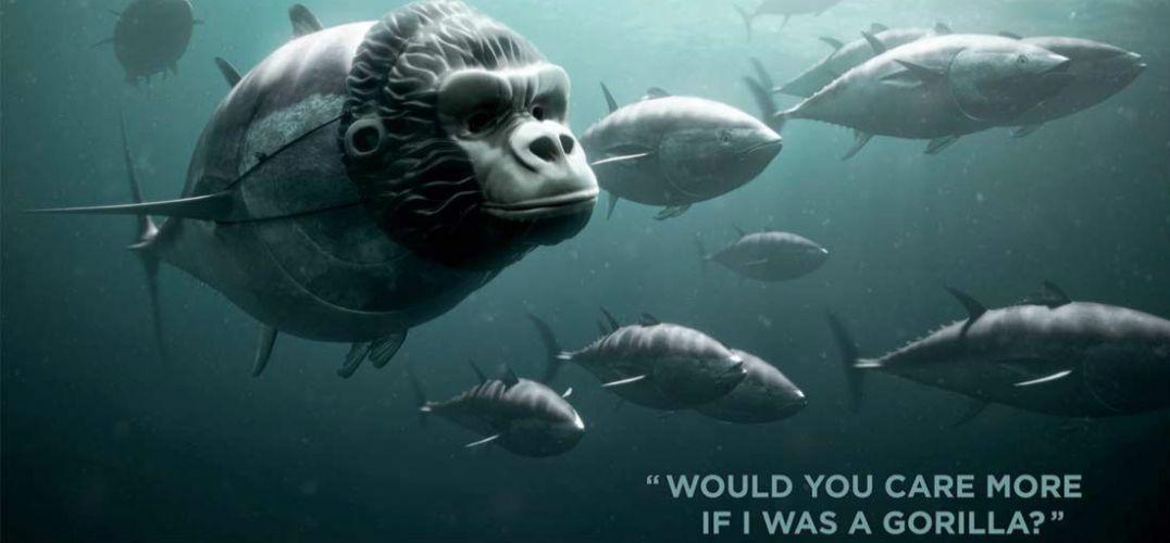 壁纸 动物 海洋动物 桌面 1076_500