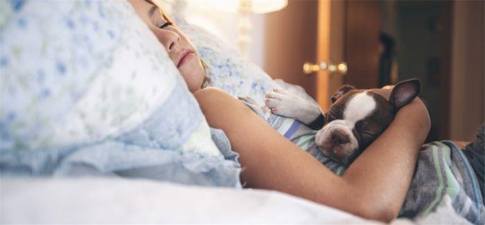 睡眠日就快到了 这8件产品 为你带来一夜好眠