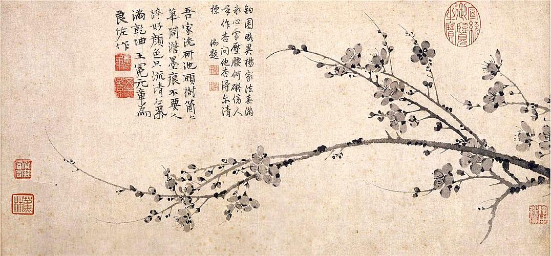 古代一颗大树背景图