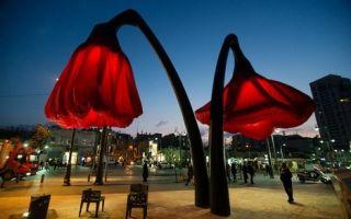 装置艺术:隐身都市的巨大花朵 会开花的路灯