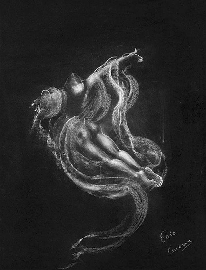 翠鸟 创作年代:2005 类型:素描 材料:粉笔黑纸 尺寸:70h×50cm