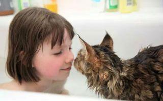 被一只猫治愈了的孤独症小萝莉和她的画