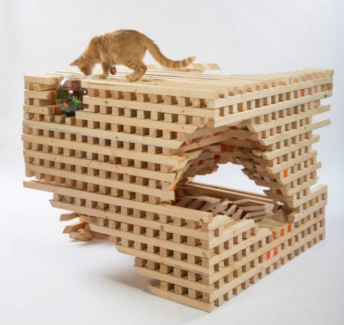 我的纸箱呢? 当建筑师遇到猫屋会发生什么