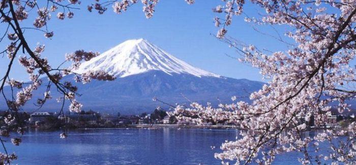 800幅照片告诉你 为什么到了东京后就会爱上日本