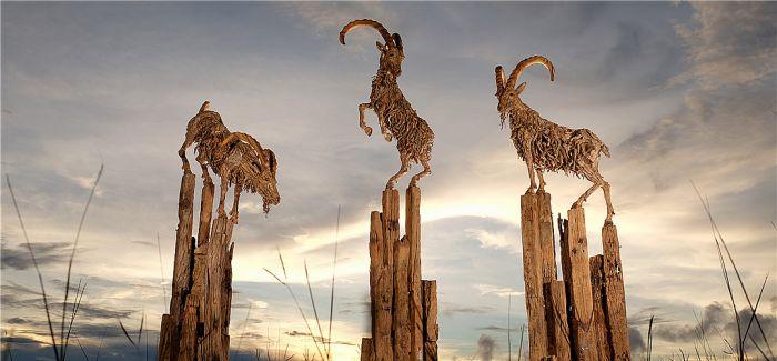 朽木可雕:30年 他把无人问津的朽木变成了活灵活现的动物