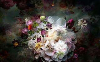 Isabelle Menin:放弃绘画 用数字摄影创造了一间扭动的花店