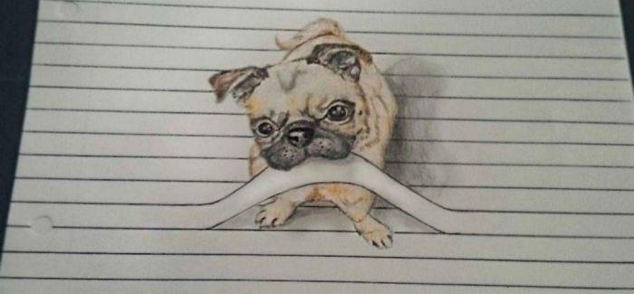 放我出去!线条中可爱的小动物