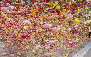 三万朵鲜花倒挂空中 伦敦艺术家许你一片浪漫花海