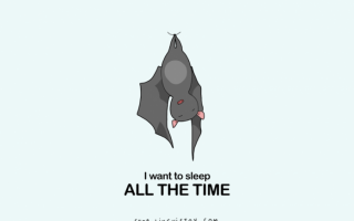 只有爱睡之人才会懂的15种日常困扰