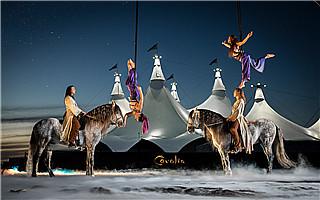 40匹马和艺术家共舞 《Cavalia·舞马》绝不是一出马戏