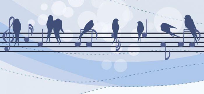 """记忆撑起交响乐的春天:国家大剧院""""中国交响乐之春""""镜像"""