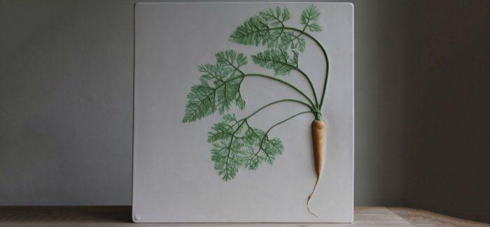 定格植物的美好瞬间    这个人用瓷砖石膏做到了!