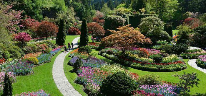春游时节  何不去世界上最美的城市赏花呢?