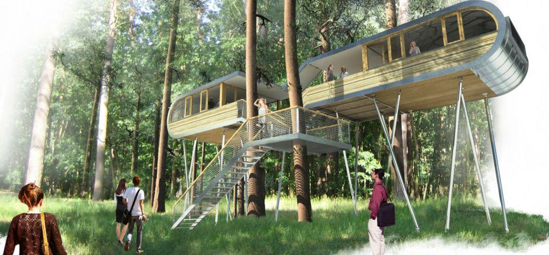 设计  建筑自然建筑设计环保树屋前卫办公 建筑自然建筑设计环保树屋