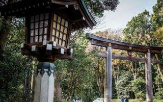 慢跑天堂 跟村上春树慢跑东京