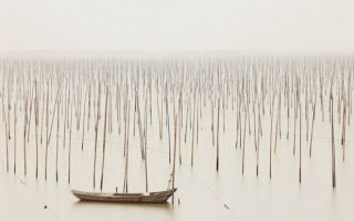 Josef Hoflehner:宁静的风光片