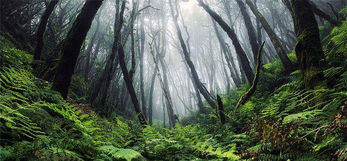 """摄影""""冒险""""家用极限运动视角展现震撼自然之景"""