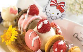 24 小时亲密接触 Hello Kitty?去新加坡就能圆梦