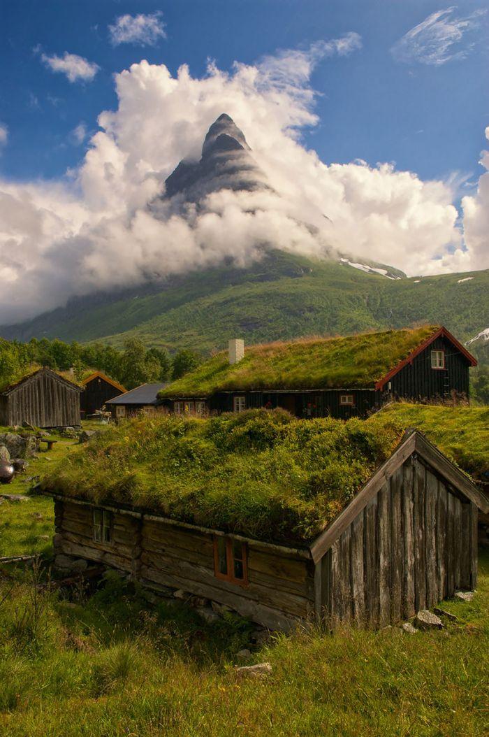 自然崇拜的极致 在屋顶上种草的北欧