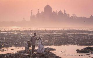 最权威的环境摄影大赛之一  入选了怎样震撼人心的作品