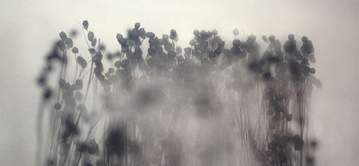 """上海C14画廊新展""""呼吸""""开幕 青年艺术家邬树楠携新作亮相上海"""