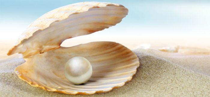 卡塔尔博物馆管理局与中国国家博物馆将联合呈献珍珠展览
